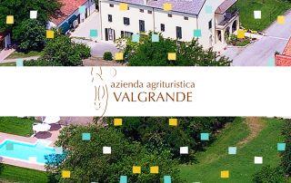 Azienda Agrituristica Valgrande / RoviGoto 2019